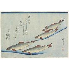 歌川広重: (River Trouts in Stream) - ミネアポリス美術館