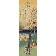 歌川広重: Cherry Blossoms on Gotenyama, Spring - ミネアポリス美術館