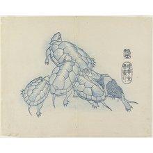 Yamada Ho_gyoku: (Turtles) - ミネアポリス美術館