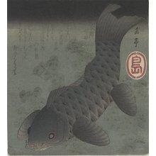 屋島岳亭: (Black Carp) - ミネアポリス美術館