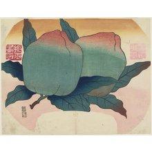 Yamada Ho_gyoku: (Fruit on Vine) - ミネアポリス美術館