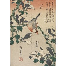 Katsushika Hokusai: Java Sparrow and Magnolia - Minneapolis Institute of Arts