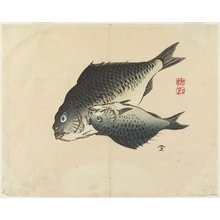 Yamada Ho_gyoku: (Pair of Fish) - Minneapolis Institute of Arts