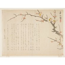 Seiko: (Flowering plum) - Minneapolis Institute of Arts