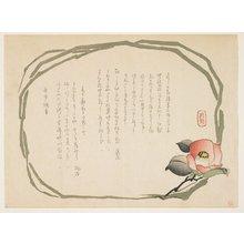 Kasai: (Camellia) - ミネアポリス美術館