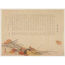 松村景文: (Dead leaves and pine needles) - ミネアポリス美術館