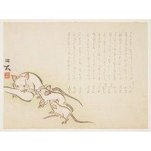 佐藤保大: (White mice) - ミネアポリス美術館