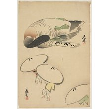 Shibata Zeshin: (Pheasant/Three men with umbrellas) - Minneapolis Institute of Arts