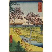 歌川広重: Sunset from Meguro in the Eastern Capital - ミネアポリス美術館