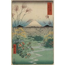 歌川広重: Field at Ostuki in Kai Province - ミネアポリス美術館
