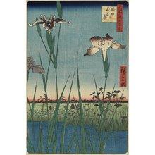歌川広重: Iris Garden at Horikiri - ミネアポリス美術館