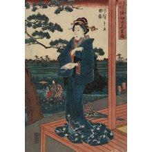 歌川広重: Iris Gaeden at Horikiri - ミネアポリス美術館