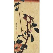 歌川広重: (Titmouse on Camellia) - ミネアポリス美術館
