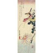 Utagawa Hiroshige: (Chrysanthemums and a Shrike) - Minneapolis Institute of Arts