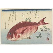 歌川広重: Sea Bream and SanshoSprigs - ミネアポリス美術館