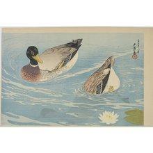 橋口五葉: Ducks - ミネアポリス美術館