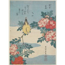 Katsushika Hokusai: Japanese Nightingale and Spray of Roses - Minneapolis Institute of Arts