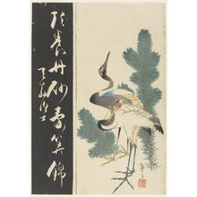 Katsushika Taito II: Two Cranes and Pine Branches - Minneapolis Institute of Arts