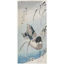 歌川広重: (Duck and Snowy Reeds) - ミネアポリス美術館
