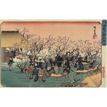 Utagawa Hiroshige: View of the Plum Garden at Kameido - Minneapolis Institute of Arts