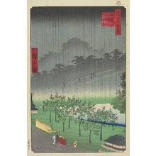 二歌川広重: EveningView, Paulownia Plantation at Akasaka in Downpour - ミネアポリス美術館