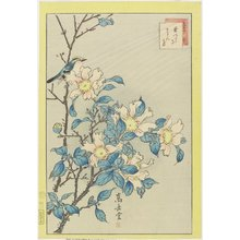 Nakayama Su_gakudo_: Blue Bird and Pink Flowers - Minneapolis Institute of Arts