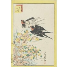 Nakayama Su_gakudo_: Homing Swallows and Red Leves - Minneapolis Institute of Arts