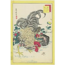 Nakayama Su_gakudo_: Rooster and Raspberries - Minneapolis Institute of Arts