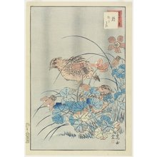 Nakayama Su_gakudo_: Two Quails in Bush - Minneapolis Institute of Arts