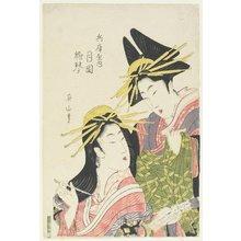 菊川英山: The Courtesans Tsukioka and Hinagoto of the Hyogoya House - ミネアポリス美術館