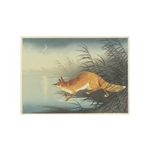 Shoson Ohara: Fox by the Moonlit Water - ミネアポリス美術館