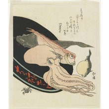 魚屋北渓: (Octopus, Red Tilefish, Pike, Globefish and Crab) - ミネアポリス美術館