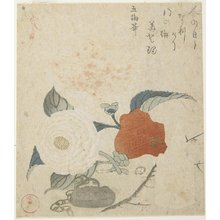 Kubo Shunman: (Plum Branch, a Peony Flower and a Metal Seal) - Minneapolis Institute of Arts