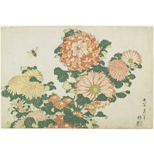 Katsushika Hokusai: Chrysanthemums and Horsefly - Minneapolis Institute of Arts