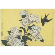 Katsushika Hokusai: Hydrangea and Swallow - Minneapolis Institute of Arts
