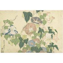 Katsushika Hokusai: Frog and Morning Glories - Minneapolis Institute of Arts