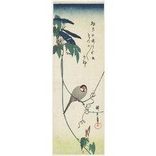 歌川広重: Java Sparrow and Morning Glories - ミネアポリス美術館