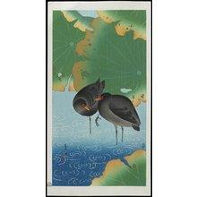 Komori Soseki: Moor Hen - ミネアポリス美術館