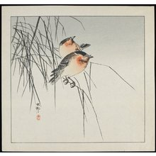 Shoson Ohara: Two Birds on Reeds - Minneapolis Institute of Arts