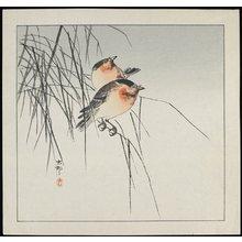 Shoson Ohara: Two Birds on Reeds - ミネアポリス美術館