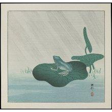 Shoson Ohara: Frog in Rain - ミネアポリス美術館