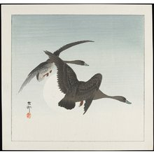 Shoson Ohara: Geese in Flight - Minneapolis Institute of Arts