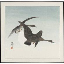 Shoson Ohara: Geese in Flight - ミネアポリス美術館