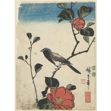 Utagawa Hiroshige: (Bird on Flowering Camelia Branch) - Minneapolis Institute of Arts