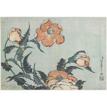 Katsushika Hokusai: Poppies - Minneapolis Institute of Arts