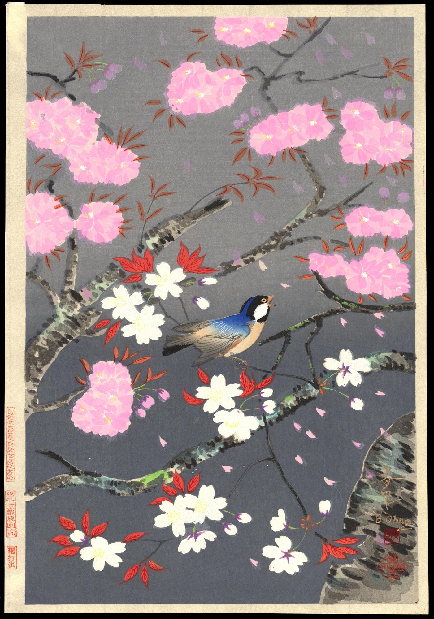 Bakufu Ohno Cherry Blossoms Ohmi Gallery Ukiyo E Search