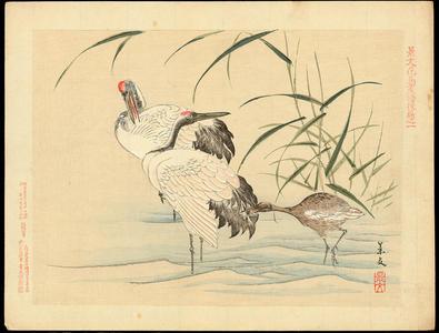 Keibun Matsumoto: Wading Cranes - 鶴 - Ohmi Gallery