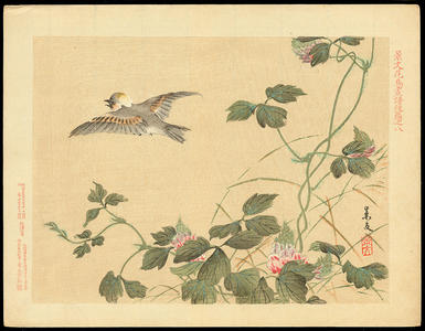Keibun Matsumoto: Japanese Tit and Arrowroot - 白頬(シジュウカラ)葛(くず) - Ohmi Gallery