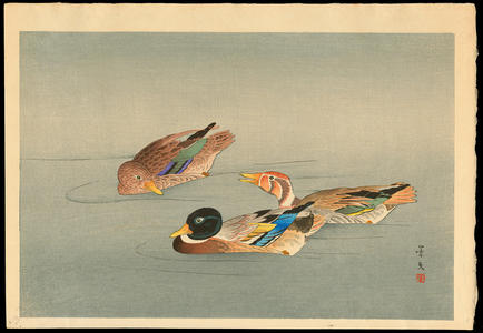 Keibun Matsumoto: Ducks - 鴨 - Ohmi Gallery