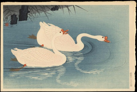 Shoson Ohara: Two Swimming Geese (1) - Ohmi Gallery